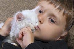 Niño pequeño que besa un gato mullido blanco en el sofá Imagen de archivo