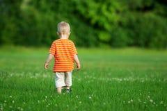Niño pequeño que camina en el campo Fotografía de archivo libre de regalías