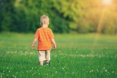 Niño pequeño que camina en el campo Imágenes de archivo libres de regalías