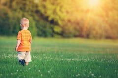 Niño pequeño que camina en el campo Fotos de archivo libres de regalías
