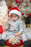 Niño pequeño que come las galletas debajo del árbol de navidad Imagen de archivo