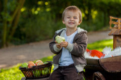 Niño pequeño que come manzanas  Imagen de archivo