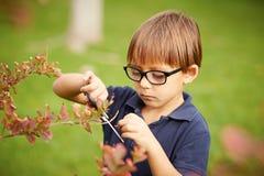 Niño pequeño que cultiva un huerto al aire libre Foto de archivo libre de regalías
