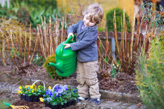 Niño pequeño que cultiva un huerto y que planta las flores en jardín Fotografía de archivo