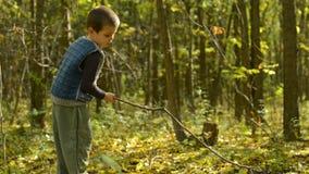 Niño pequeño que juega en el bosque almacen de metraje de vídeo