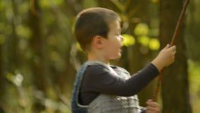 Niño pequeño que juega en el bosque almacen de video