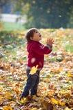 Niño pequeño que mira para arriba en una hoja que cae en maravilla Imagen de archivo libre de regalías