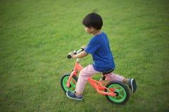 Niño pequeño que monta una bici de la balanza en hierba fotos de archivo