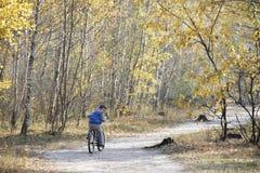 Niño pequeño que monta una bici en el camino en el bosque del otoño Foto de archivo