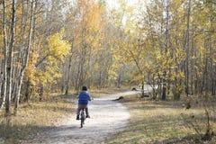 Niño pequeño que monta una bici en el camino en el bosque del otoño Fotos de archivo