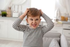 Niño pequeño que rasguña la cabeza en casa imagen de archivo libre de regalías