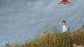 Niño pequeño que se coloca entre la hierba que sostiene la cometa colorida que vuela en fondo del cielo azul almacen de video