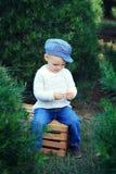 Niño pequeño que se sienta en el cajón en árboles de hoja perenne Imágenes de archivo libres de regalías