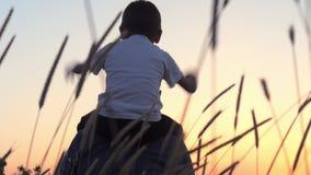 Niño pequeño que se sienta en hombros de su papá y que juega las manos aumentadas en la puesta del sol en el campo del trigo Papá metrajes