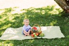 Niño pequeño que se sienta en una estera que tiene una comida campestre con una cesta llena de frutas fotos de archivo