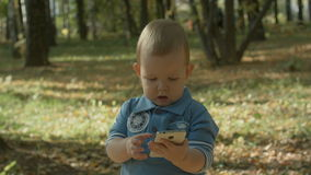 Niño pequeño que usa smartphone en parque del otoño almacen de video