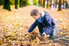 Niño pequeño sonriente feliz que juega con las hojas foto de archivo