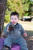 Niño pequeño y un cono del pino fotos de archivo