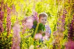 Niño preescolar lindo en el campo de flores violeta de los lupines, sosteniendo a imagen de archivo