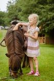 Niño que abraza el pequeño potro marrón Fotos de archivo libres de regalías