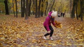 Niño que arregla el ramo de hojas de arce caidas almacen de video
