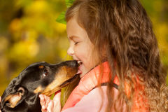 Niño que besa el perrito del perro basset Imagen de archivo