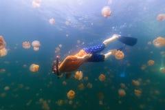 Niño que bucea en el lago jellyfish Imagen de archivo