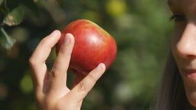 Niño que come Apple, niño en huerta, granjero Girl Studying Fruits en árbol foto de archivo