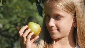 Niño que come Apple, niño en huerta, granjero Girl Studying Fruits en árbol fotografía de archivo libre de regalías