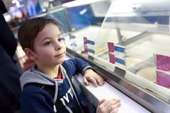 Niño que elige el helado imagen de archivo libre de regalías
