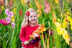 Niño que escoge las flores frescas del gladiolo Foto de archivo