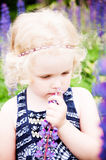 Niño que escoge las flores salvajes en campo Imágenes de archivo libres de regalías