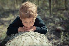 Niño que examina la naturaleza en un árbol tajado Imagen de archivo libre de regalías