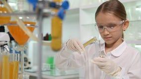Niño que hace el experimento químico en el laboratorio de la escuela, estudiante Girl Science, clase del niño fotografía de archivo