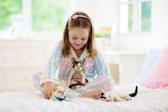Niño que juega con el gato del bebé Ni?o y gatito foto de archivo