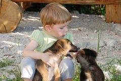 Niño que juega con los perros Imagen de archivo