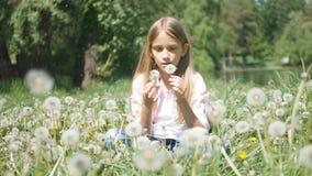 Niño que juega en el parque, flores del diente de león del niño que soplan en el prado, muchacha en naturaleza fotos de archivo