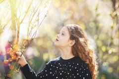 Niño que lleva a cabo la rama de árbol verde joven en luz del sol Fotos de archivo libres de regalías
