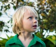 Niño que mira con maravilla en naturaleza foto de archivo