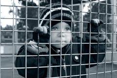Niño que mira a través de la cerca Foto de archivo libre de regalías