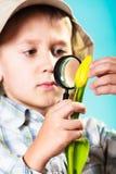 Niño que mira a través de una lupa Imagenes de archivo