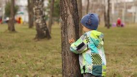 Niño que oculta detrás de un árbol almacen de metraje de vídeo