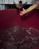 Niño que prueba el jugo de uva fresco imagen de archivo libre de regalías