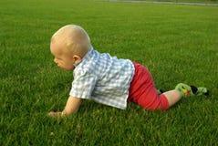 Niño que se arrastra en el jardín y el patio trasero de exploración Foto de archivo