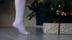 Niño que se coloca de puntillas cerca del árbol de navidad almacen de video