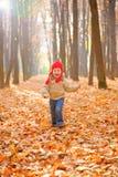 Niño que se ejecuta en bosque del otoño Imagen de archivo libre de regalías