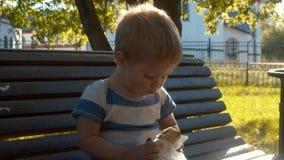 Niño que se sienta en un banco y que come el bollo almacen de metraje de vídeo