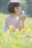 Niño que sopla dandelion2973 Fotos de archivo libres de regalías