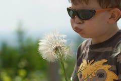 Niño que sopla el germen de Dandellion Fotografía de archivo