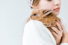 Niño que sostiene el conejo peludo lindo aislado en blanco Foto de archivo
